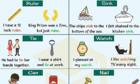 Những từ tiếng Anh đa nghĩa bạn thường gặp