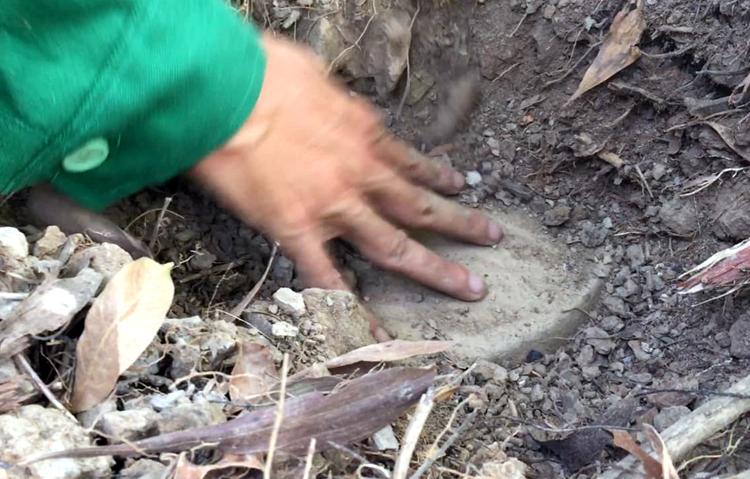 Một vị trí chôn cất xác thai nhitại nhà máy. Ảnh:Hoàng Hạnh.