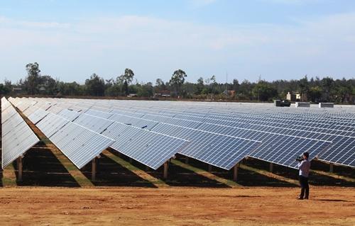 Nhà máy điện mặt trời có diện tích 30 ha. Ảnh: Phạm Linh.