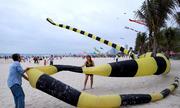 Diều rắn 100 mét xuất hiện trên bờ biển Đà Nẵng