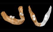 Phát hiện xương hàm người 160.000 năm tuổi ở Tây Tạng