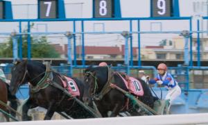 Cuộc đua ngựa chậm nhất thế giới ở Nhật Bản