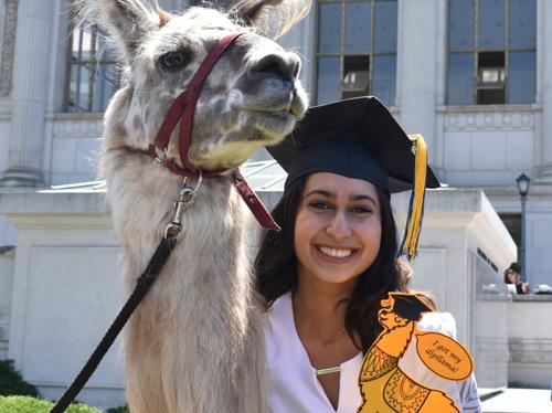 Sinh viên chụp với lạc đà không bướu. Ảnh: Matthew Cantor/The Guardian