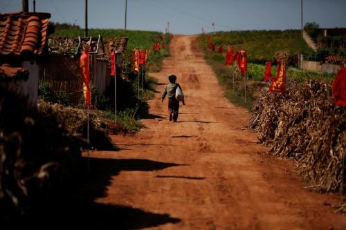 Một nông dân Triều Tiên bước đi trên con đường làng ở South Hwanghae. Ảnh: Reuters.