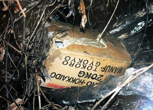 Thùng giấy đựng thi thể nạn nhân.