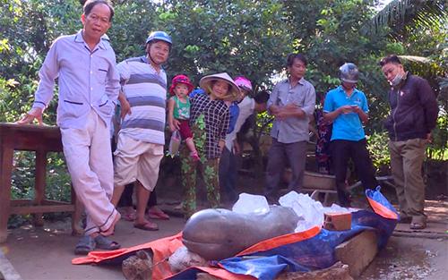 Con cá đã chết, được ông Thái ướp đá để trước nhà. Ảnh: Vĩnh Nam