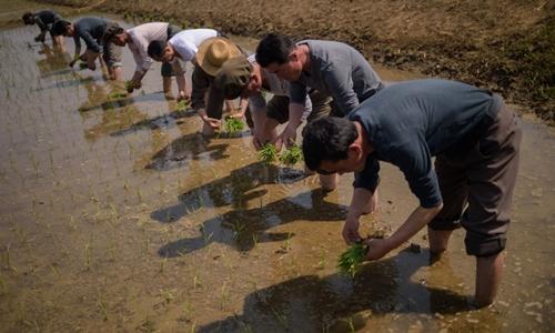 Nông dân Triều Tiên ở Nampho ngày 12/5. Ảnh: AFP.