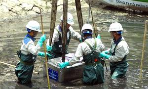 Hà Nội thí điểm làm sạch sông Tô Lịch với công nghệ nano