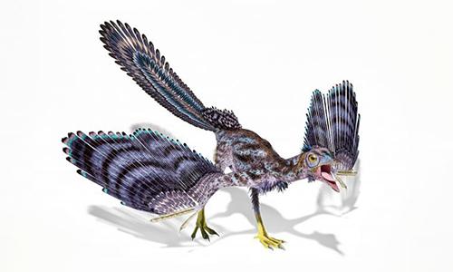 Alcmonavis poeschli được xem là khủng long bay giống chim nhất. Ảnh: Times of Malta.