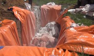 Đồng Nai tiêu hủy 4 tấn thịt nhiễm bệnh tả heo châu Phi