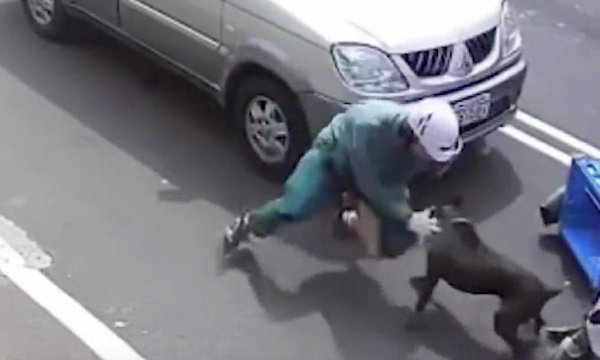 Người đi xe máy bị chó pitbull cắn giữa đường
