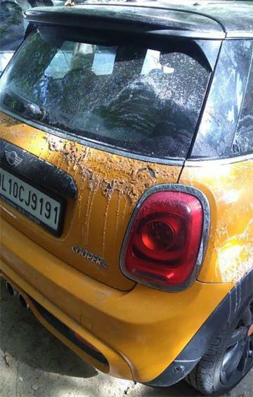 Chiếc Mini Cooper S màu vàng với lớp sơn ở đuôi xe trông như bị nung chảy. Một phần hông xe cũng bị ảnh hưởng. Dường như hóa chất chảy từ kính hậu hoặc nóc xe xuống. Ảnh:Team-BHP