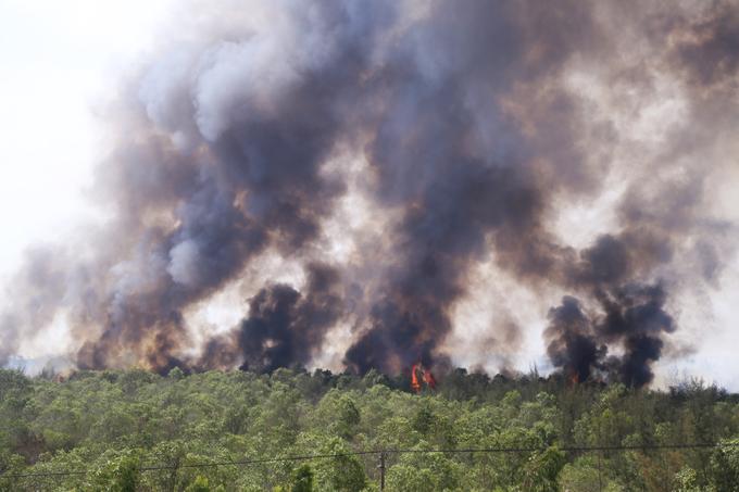 Khói lửa cuồn cuộn ở khu rừng ven biển Quảng Bình