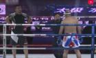 Cao thủ Vá»nh Xuân dá» bại trận MMA vì không luyá»n tuyá»t ká»¹