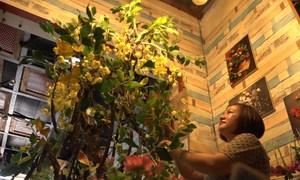 Cây bò cạp vàng làm từ đất sét cao 2,5 m ở Sài Gòn
