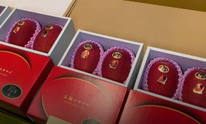 Xoài đỏ Nhật Bản đắt nhất thế giới gần 5.000 USD mỗi cặp
