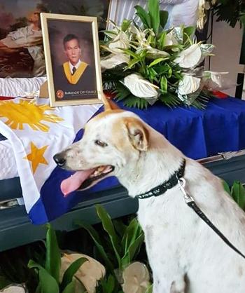 Buboy trong lễ tang giáo sư Carmelito Marcelo. Ảnh: ViralPress