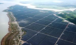 Cánh đồng điện mặt trời hơn 12.000 tỷ đồng ở hồ Dầu Tiếng
