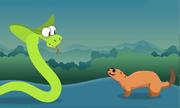 Vũ khí giúp cầy mangut giành chiến thắng khi đối đầu rắn hổ mang
