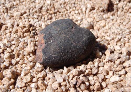 Một mảnh thiên thạch được phát hiện ở sa mạc Atacama.Ảnh: Jérôme Gattacceca.