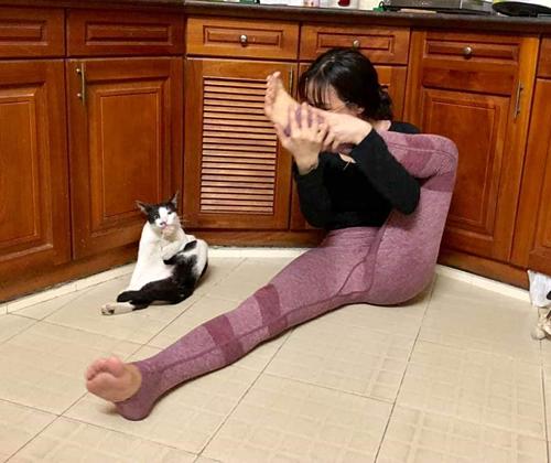 Mèo tập yoga cùng cô chủ