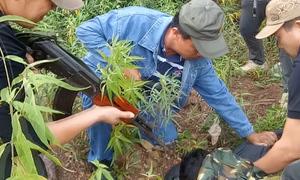 Người đàn ông Lào vận chuyển 100 nghìn viên ma túy bị bắt giữ