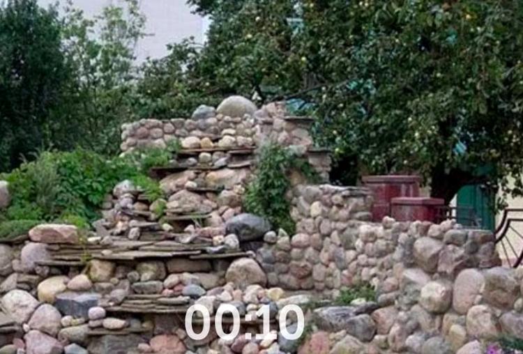Thử thách tìm mèo ở mỗi bức hình trong 10 giây - 2