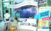 Runner dự VnExpress Marathon đổ bộ đến Bình Định