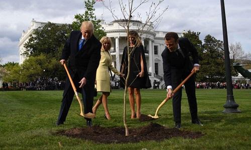 Trump (trái)và Macron trồng cây sồi trên bãi cỏ Nhà Trắng tháng 4/2018. Ảnh: AFP.