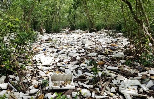 Nhiều ha rừng ngập mặn tại xã Tiên Hưng, huyện Tiên Lãng (Hải Phòng) bị rác phủ kín bề mặt, lượng rác dày cả mét. Ảnh: Giang Chinh
