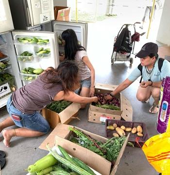 Nhóm Cứu hộ Thực phẩm SG thu gom rau củ và hoa quả, rồi phân phối chúng tại các tủ lạnh công cộng, nơi người cần dùng có thể lấy miễn phí. Ảnh: Facebook.