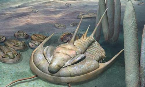Hình ảnh phục dựng loàiRedlichia rex. Ảnh: Đại họcAdelaide.