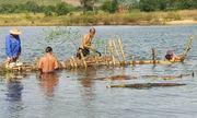 Người dân Huế tháo dỡ cọc tre ngăn 'cát tặc' trên sông Bồ