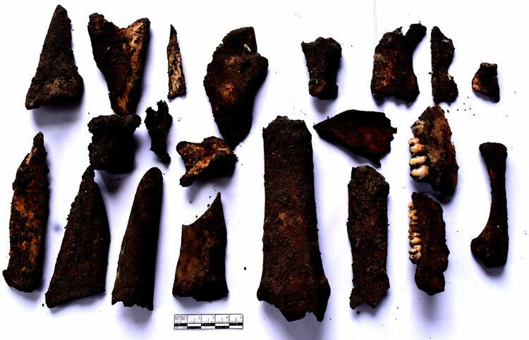 Xương răng động vật tại Động Puông. Ảnh: Văn Hạnh.