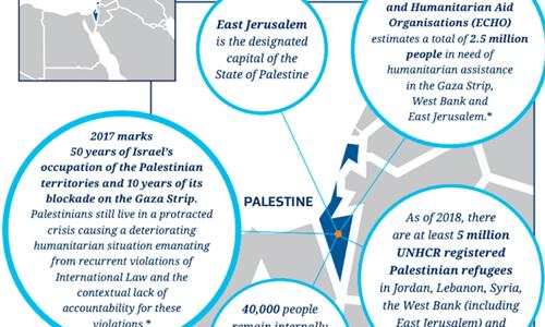 Phần lãnh thổ Israel được tô màu xanh và được chú thích bằng tên Palestine trên bản đồ của cơ quan nhập cư New Zealand. Ảnh: RT.