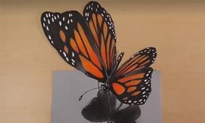 Cách vẽ con bướm bay trên tờ giấy