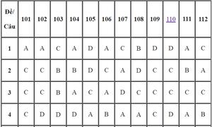 Đáp án 24 mã đề môn Toán thi THPT quốc gia