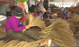 Chổi bông cỏ ở An Giang xuất khẩu sang Australia