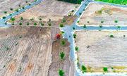 Chủ dự án 'khu dân cư Alibaba' cho lấp lại đường nhựa