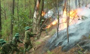 Hàng trăm bộ đội khống chế cháy rừng ở Nghệ An