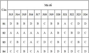 Đáp án 24 mã đề Giáo dục công dân thi THPT quốc gia