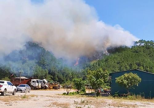 Khói bốc lên nghi ngút tạikhu rừng thông ở huyện Nghi Xuân. Ảnh: Đ.H