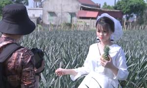 Nhiều cặp đôi chụp hình cưới trên cánh đồng dứa ở Ninh Bình