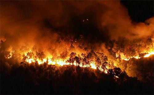 Đám cháy ở núi Hồng Lĩnh nhìn từ trên cao. Ảnh: Sách Nguyễn