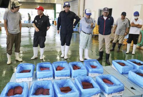 Thịt cá voi được bán đấu giá ở chợ Sendai hôm qua. Ảnh: AP.