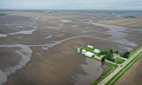 Cánh đồng sũng nước ở làng Gardner, hạt Grundy, bang Illinois hôm 29/5. Ảnh: Washington Post.