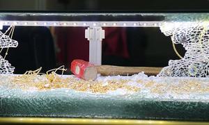 Kẻ cướp tiệm vàng ở Đà Lạt bị người dân khống chế