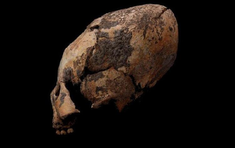Hộp sọ kéo dài được khai quật ở Houtaomuga, Trung Quốc. Ảnh: Zhang và nhóm nghiên cứu.
