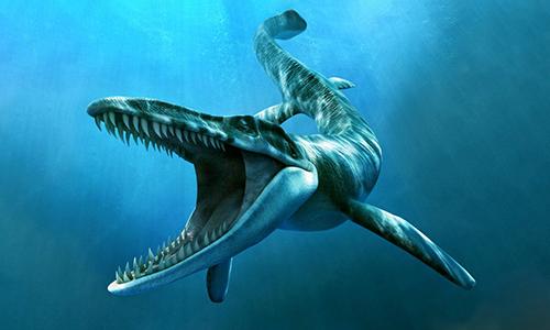 Đồ họa mô phỏng chi thằn lằn biển Tylosaurus. Ảnh: Prehistoric Animals.