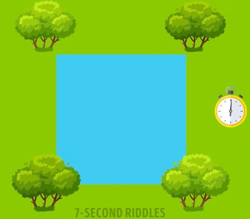 Thử tài nhanh trí với năm câu đố - 2
